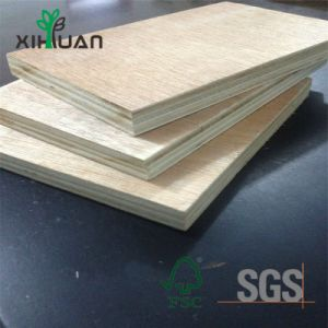 Sig. principale Glue Commercial Plywood Prices di memoria del pioppo dell'esportazione