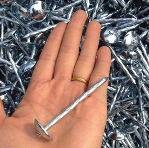 Chiodi d'acciaio galvanizzati dell'ombrello del tetto per il prezzo di fabbrica