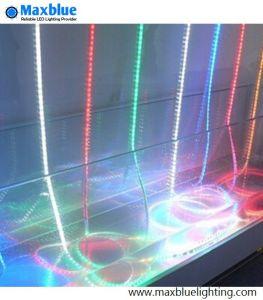 Indicatore luminoso di striscia flessibile di alta qualità SMD 5050 impermeabili LED di IP65 RGBW
