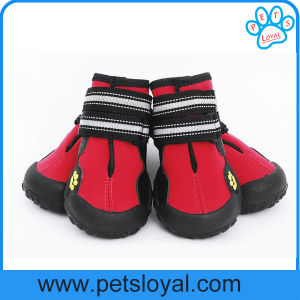 Antideslizante resistente al agua, único medio Gran Perro zapatos
