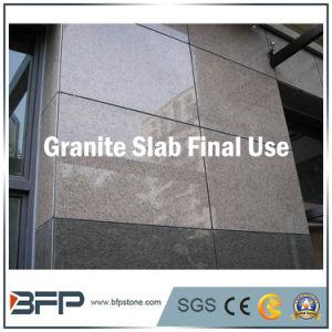タイルのための灰色の花こう岩G603のカウンタートップの半分の平板Gangsaw、階段建築材料