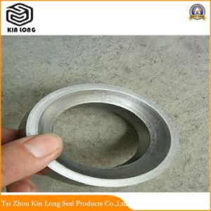 Flexibler Graphitverpackungs-Ring verwendet für am meisten benutztes in der Nahrung, pharmazeutische, chemische Papierfaser, wie hohe Sauberkeits-Anforderungen