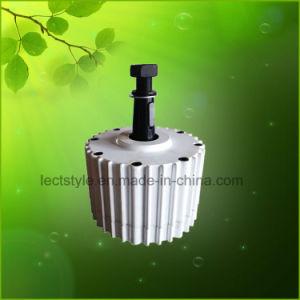 1000W Ppmg 24V/48V générateur à aimant permanent