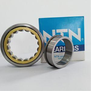 Complemento completo cilindrico dei cuscinetti a rullo con il riferimento interno esteso dell'anello