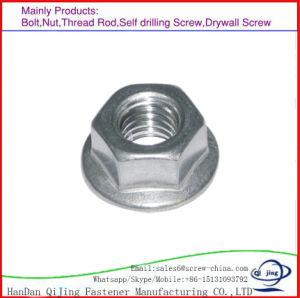En acier inoxydable 304/316/DIN 934 en acier au carbone des écrous hexagonaux DIN934