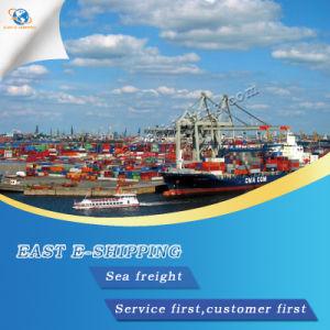 Transporte marítimo internacional de Shenzhen a América del Sur