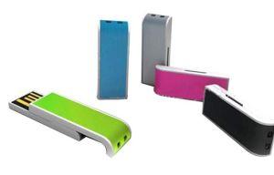 Рекламные деловых обедов флэш-накопитель USB нажмите кнопку Стиль слайда