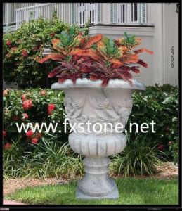 Jardín de flores de color blanco puro Pot (BJ-FEIXIANG-0053)