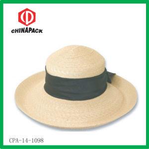 Grande cappello largo della spiaggia (CPA-14-1098)