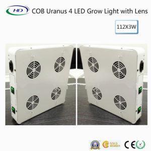 De MAÏSKOLF Uranus 4 leiden groeit Licht voor Medische Installaties (Lens)
