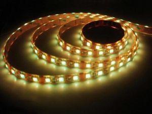 Tira de LEDS (CY-TIRA DE LEDS-003)