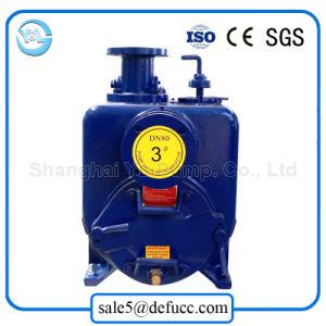 3 pouces de la pompe à amorçage automatique horizontale de boue