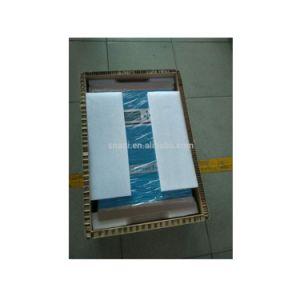 Fornitore 24V/48V 1000W di Snadi a 6000W fuori dall'invertitore solare ibrido di griglia per la casa del sistema di energia solare
