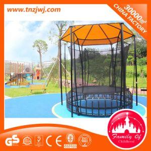 Trampoline de conditionnement physique, en plein air PARC Trampoline avec filet Trampoline pour la vente du fabricant