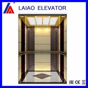 Villa turística casa de los pasajeros Vvvf elevador de observación con alta calidad