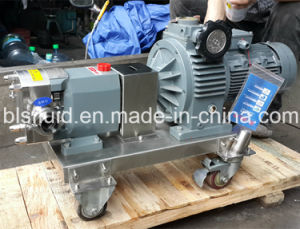 Насос ротора из нержавеющей стали с колеса