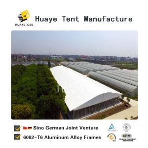 Im FreienArcum Form-großes Partei-Ereignis-Zelt für Verkauf