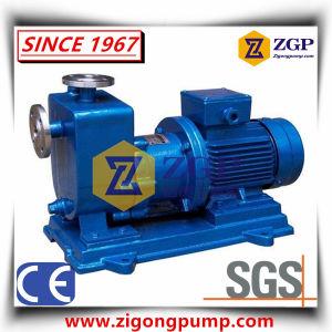 Guarnizione orizzontale meno forza magnetica di perdita di no che guida la pompa centrifuga del metallo