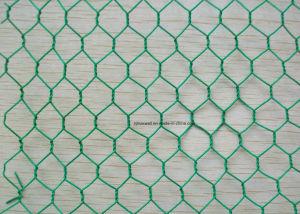 Hexagonal de acero galvanizado o malla de alambre recubierto de malla de alambre de pollo