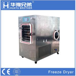 Modelo de planta de congelación de la máquina secadora Lyophilizer laboratorio