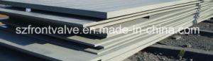 L'acier au carbone/Plaques en acier en acier allié