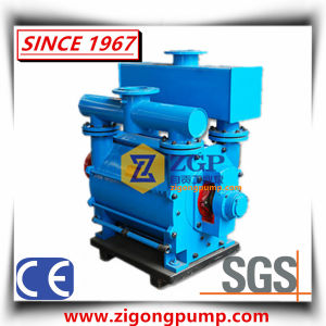 Flüssige Wasser-Ring-Vakuumpumpe und Kompressor für Kraftwerk
