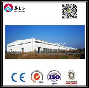 Magazzino personalizzato alta qualità della struttura d'acciaio (BYSS012)