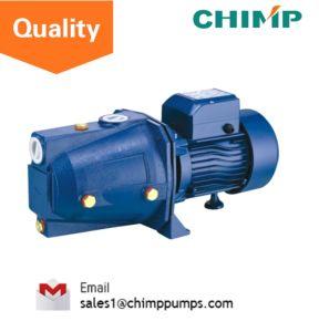 Pompe à eau électrique Self-Priming 1.0HP pour l'eau propre