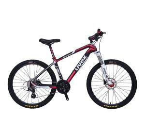 Carbone carbone vélo de route ensemble complet de vélo Vélo de cyclo-cross 700C OEM