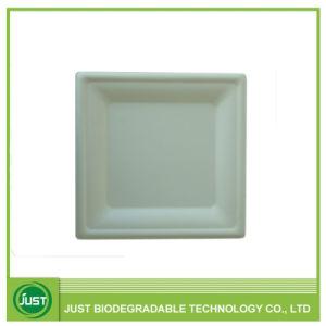 Carré de la plaque de papier compostables jetables 10'