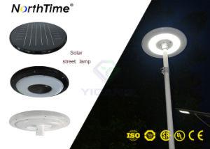 30W High-Efficiency monokristallines Sonnenkollektor-Garten-Licht des Silikon-LED