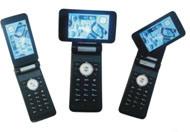 Mobiele Telefoon (F698)