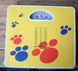 125kg Metal Bathroom Scale Zzjka-04