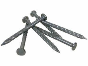 De uitstekende kwaliteit galvaniseerde Concrete Spijkers met Spiraalvormige Steel