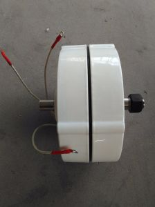 100W 12V/24V Pmg Dauermagnetgenerator
