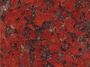 يستورد جنوبيّة إفريقيا أحمر صوان