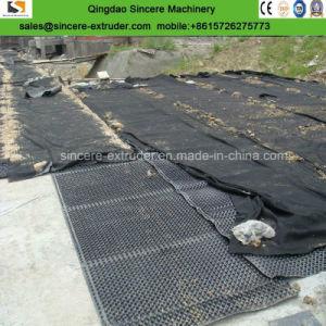 Le PEHD PE Conseil de drainage de cavité Ligne d'extrusion lamination avec géotextile
