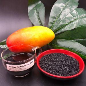 Super Glanzende Humusachtige Vlokken 65% van Humater van het Kalium