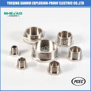 Spina Hex dell'acciaio inossidabile (accessori per tubi filettati)