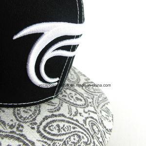 Borda Plana 6 painéis em puro algodão bordados boné de logotipo