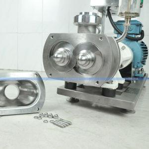 Pompa progressiva della cavità di spirale della vite dell'acciaio inossidabile per l'estetica dei residui