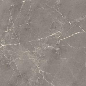 Speciale Ontwerpen van Porselein Verglaasde Tegels voor Muur en Vloer