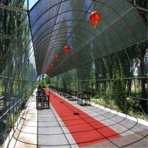 Gases com efeito de 100% virgem agrícolas HDPE Sombra Sun Net