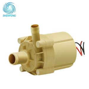 12V 24V de MiniPomp van de Zuiveringsinstallatie van het Water van het Huis van gelijkstroom met Hoofd 5m Stroom 9L/Min