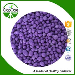 De chemische Meststof NPK van de Meststof van de Samenstelling 20-5-5+Te