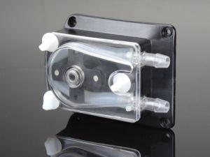 ODM rapido Syrup Pump 304k di Load per Beverage Machine come Distributor