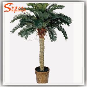 Новый стиль герметизированное искусственных растительных Palm Tree на