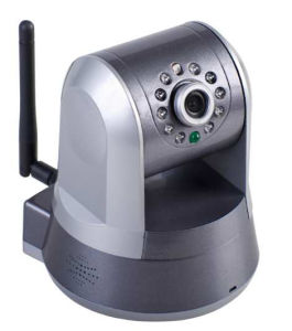 Mit hoher Dichte IP-Kamera P2P-PTZ