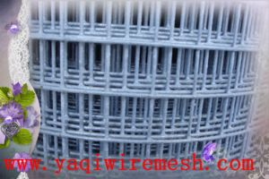 Factory PriceのWelded Wire Meshの中国Good Supplier
