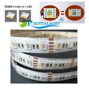 60LED/M colorido Change IP20 IP65 IP68, IP67 4 em 1 Luz de faixa de LED RGBW Corda